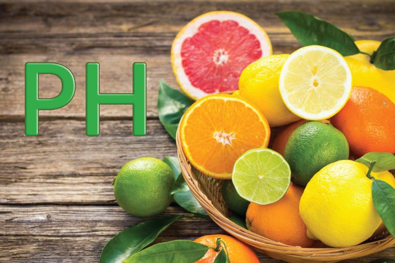 Come migliorare il pH con i cibi acidificanti e alcalinizzanti